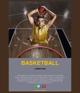 Basketball-basic-01 (FR)