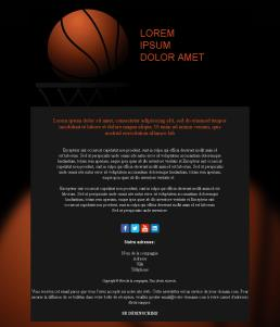 Basketball-medium-02 (FR)
